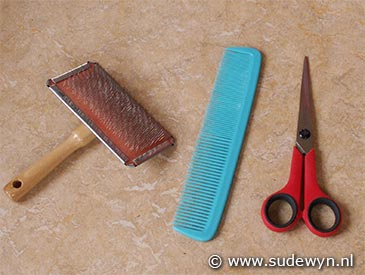 All you need to groom your Stabyhoun is a comb, a brush, scissors and some handiness